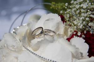 Hochzeit Ringe _3418